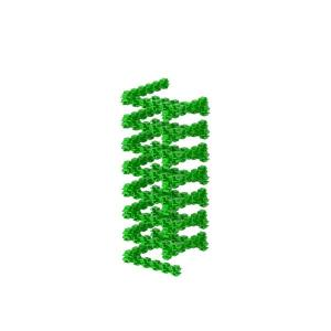 Spring - Fanclastic - 3D creative building set for children